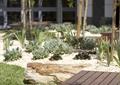 中庭景观,木栈道,自然景石