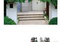 庭院,庭院花园,庭院景观