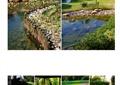 别墅庭院,庭院景观,庭院花园,水池,景石石头,自然景石