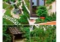 别墅庭院,庭院景观,庭院花园,水池,汀步
