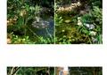 別墅庭院,庭院花園,水池,桌椅,草坪