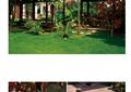 庭院,庭院花園,庭院景觀,草坪,涼亭,水池,花缽