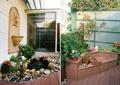 庭院景观,景墙,石头小品,树池坐凳