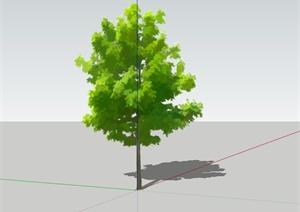 三角枫景观植物设计SU(草图大师)模型