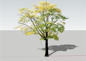 单棵景观大树设计SU(草图大师)模型