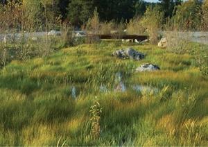 劳伦斯洛克菲勒自然保护区jpg实景图