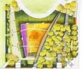 彩平图,公园景观,公园,公园绿化