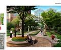 住宅景观,小区景观,树池,住宅景观绿化