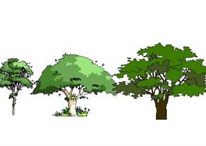 8款树木植物SU(草图大师)素材模型