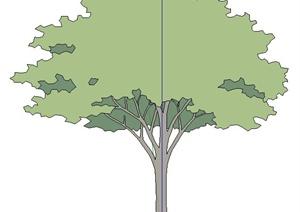 单棵2D树木植物SU(草图大师)素材模型