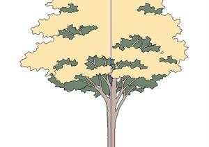 黄色树木植物SU(草图大师)素材模型