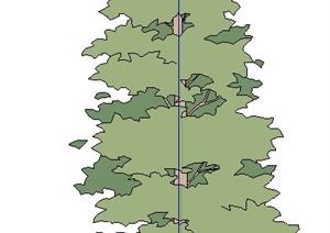 单株树木植物SU(草图大师)素材模型