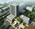 办公楼,办公建筑,球场,办公环境