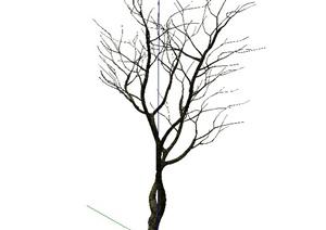 枯树植物SU(草图大师)模型